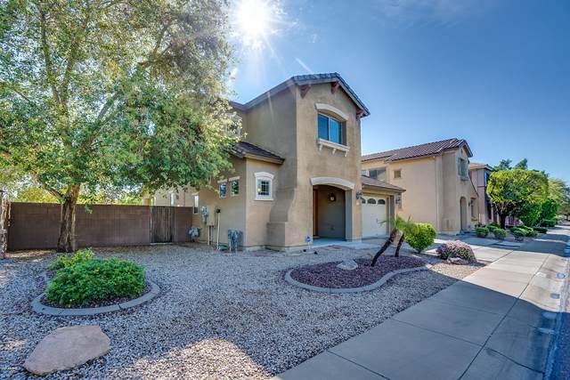 15191 N 145TH Avenue, Surprise, AZ 85379 (MLS #6052711) :: Brett Tanner Home Selling Team