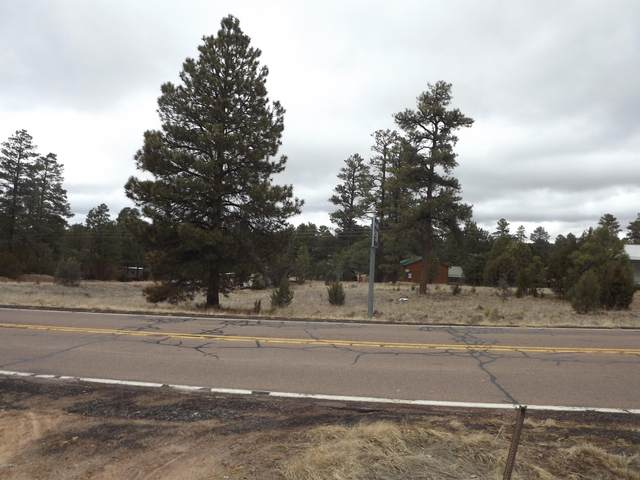 2046 State Road 277 Highway, Overgaard, AZ 85933 (MLS #6052779) :: Long Realty West Valley