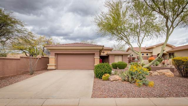 2468 W Turtle Hill Drive, Anthem, AZ 85086 (MLS #6052892) :: Lucido Agency