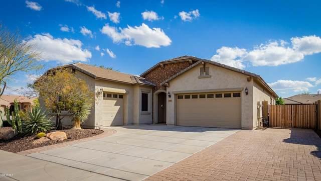 5531 W Buckhorn Trail, Phoenix, AZ 85083 (MLS #6052895) :: The Laughton Team