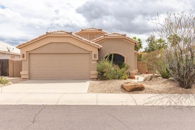 2223 E Ruby Lane, Phoenix, AZ 85024 (MLS #6052963) :: Long Realty West Valley