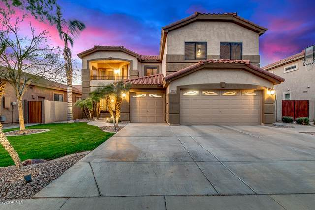 292 W Pelican Drive, Chandler, AZ 85286 (MLS #6052999) :: The Everest Team at eXp Realty