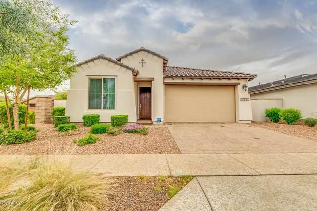 12424 N 144TH Drive, Surprise, AZ 85379 (MLS #6053050) :: The Garcia Group