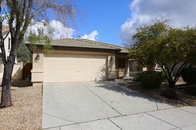 2428 W Blue Sky Drive, Phoenix, AZ 85085 (MLS #6053114) :: Conway Real Estate
