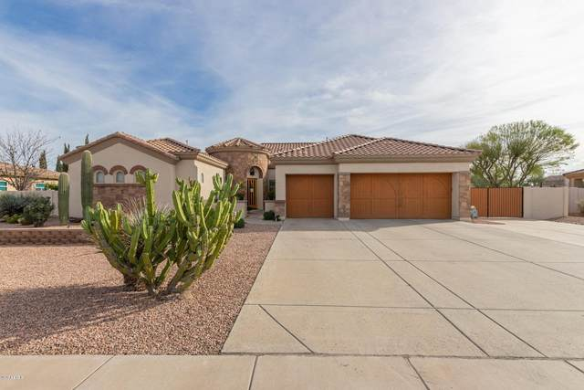 815 E County Down Drive, Chandler, AZ 85249 (MLS #6053161) :: The Daniel Montez Real Estate Group