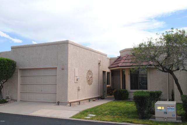 752 S Privet Way, Mesa, AZ 85208 (MLS #6053172) :: Brett Tanner Home Selling Team