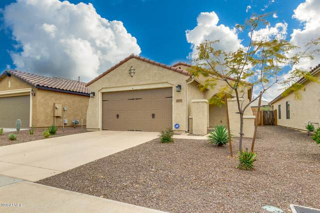 26079 W Tonto Lane, Buckeye, AZ 85396 (MLS #6053188) :: Brett Tanner Home Selling Team