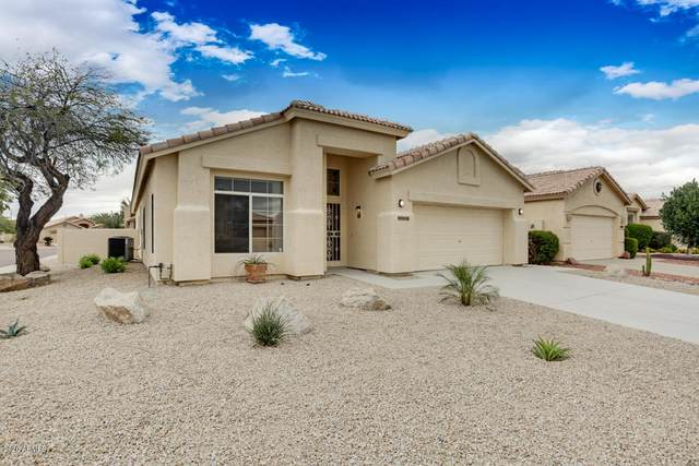9062 W Escuda Drive, Peoria, AZ 85382 (MLS #6053260) :: The Bill and Cindy Flowers Team