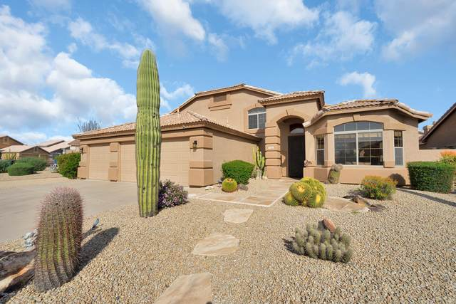 4425 E Casey Lane, Cave Creek, AZ 85331 (MLS #6053312) :: Riddle Realty Group - Keller Williams Arizona Realty