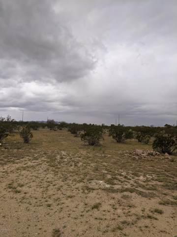 2586 S Colorado Drive, Casa Grande, AZ 85194 (MLS #6053484) :: Lux Home Group at  Keller Williams Realty Phoenix