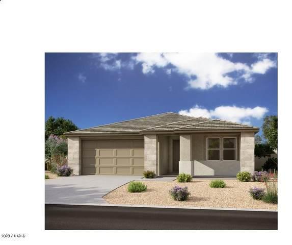 22706 E Domingo Road, Queen Creek, AZ 85142 (MLS #6053500) :: Revelation Real Estate