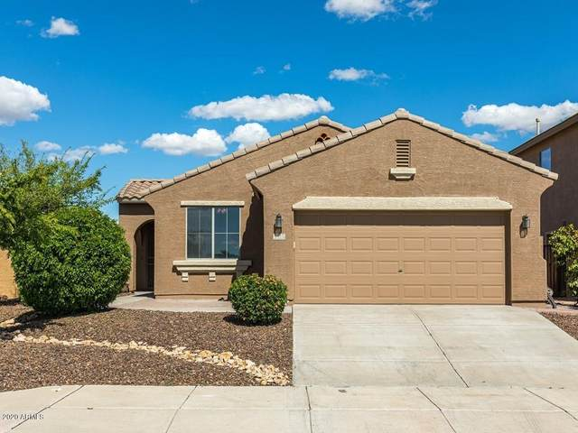 29537 N Smokey Lane, Peoria, AZ 85383 (MLS #6053539) :: Howe Realty