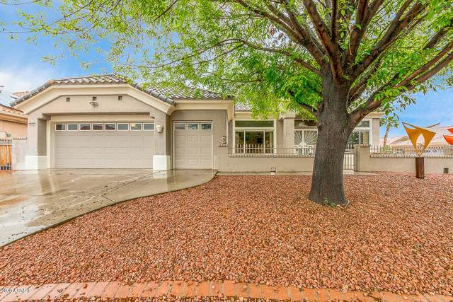 22603 N Dusty Trail Boulevard, Sun City West, AZ 85375 (MLS #6053609) :: Brett Tanner Home Selling Team