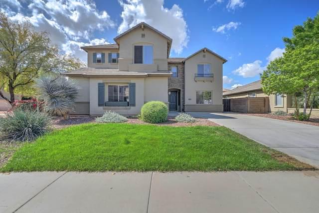 1714 N 113TH Avenue, Avondale, AZ 85392 (MLS #6053611) :: The Laughton Team