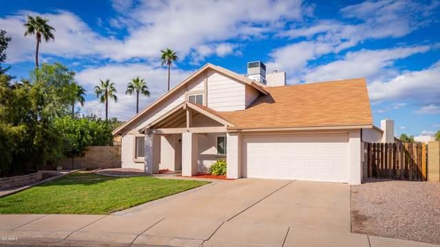 1316 W Irisado Circle, Mesa, AZ 85202 (MLS #6053629) :: The Kenny Klaus Team