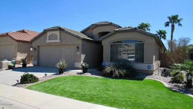 42547 W Desert Fairways Drive, Maricopa, AZ 85138 (MLS #6053646) :: Brett Tanner Home Selling Team