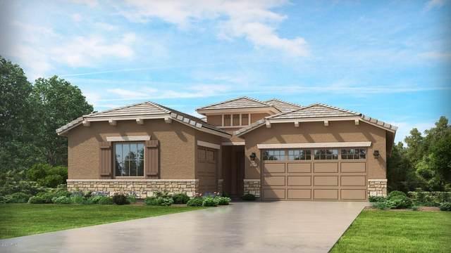 21150 E Domingo Road, Queen Creek, AZ 85142 (MLS #6053743) :: Revelation Real Estate