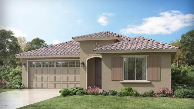 21160 E Domingo Road, Queen Creek, AZ 85142 (MLS #6053747) :: Revelation Real Estate