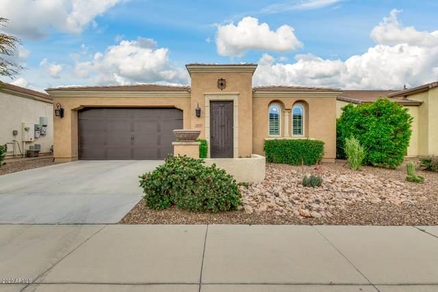 821 E Vesper Trail, San Tan Valley, AZ 85140 (MLS #6053803) :: Arizona Home Group