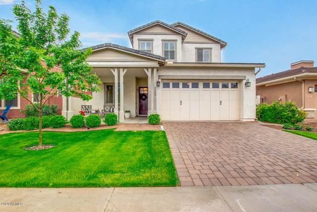 3043 E Sagebrush Street, Gilbert, AZ 85296 (MLS #6054042) :: Brett Tanner Home Selling Team