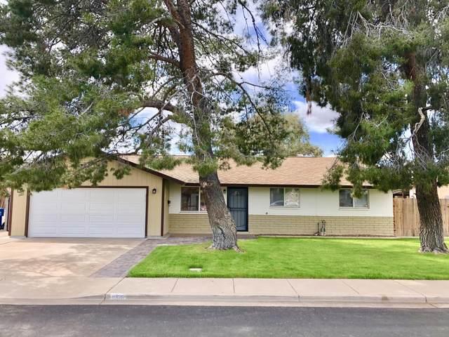 1005 W Hickory Street, Mesa, AZ 85201 (MLS #6054107) :: Yost Realty Group at RE/MAX Casa Grande