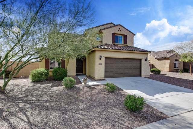 27516 N 172ND Avenue, Surprise, AZ 85387 (MLS #6054126) :: Brett Tanner Home Selling Team