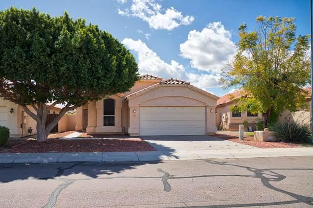 12625 W Edgemont Avenue, Avondale, AZ 85392 (MLS #6054262) :: Brett Tanner Home Selling Team