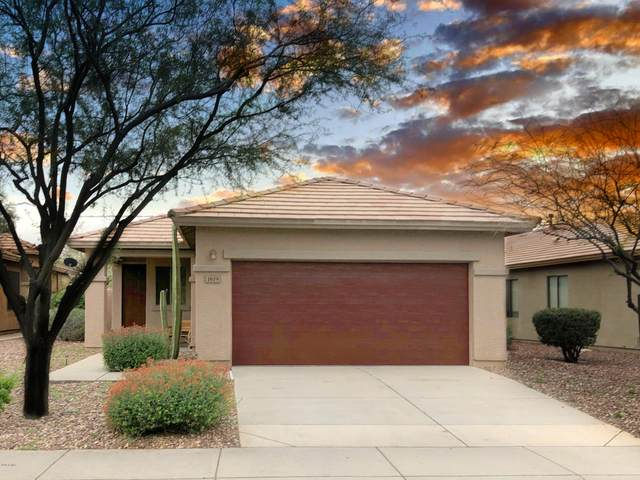 1619 W Owens Way, Anthem, AZ 85086 (MLS #6054280) :: Kepple Real Estate Group
