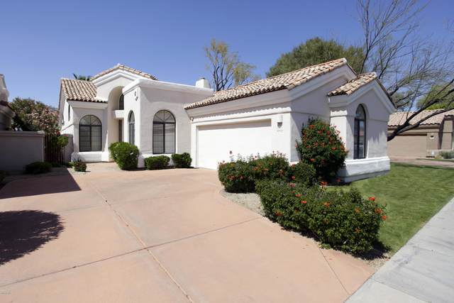 8252 E Cortez Drive, Scottsdale, AZ 85260 (MLS #6054298) :: The Property Partners at eXp Realty