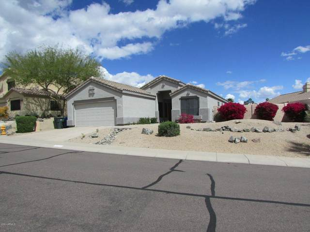 16641 S 2ND Place, Phoenix, AZ 85048 (MLS #6054367) :: Revelation Real Estate