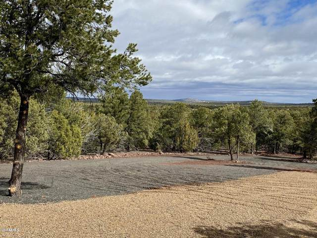 TBD Co Rd 8409, Vernon, AZ 85940 (MLS #6054416) :: The Carin Nguyen Team