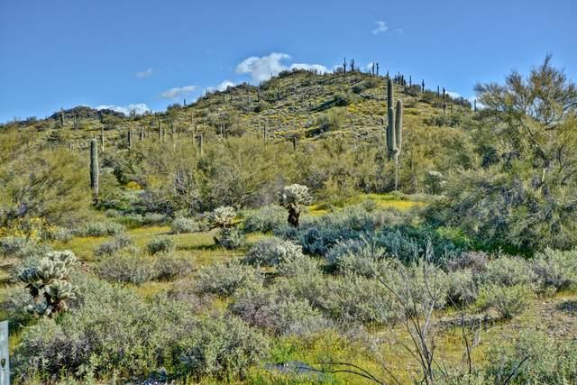 5524 E Butte Canyon Drive, Cave Creek, AZ 85331 (#6054470) :: Luxury Group - Realty Executives Arizona Properties