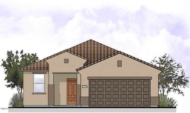 11638 W Boca Raton Road, El Mirage, AZ 85335 (MLS #6054482) :: Devor Real Estate Associates