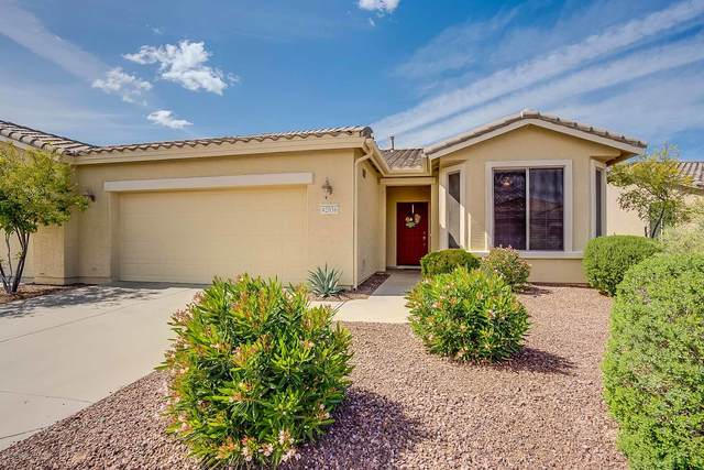 42036 W Dorsey Drive, Maricopa, AZ 85138 (MLS #6054504) :: The Property Partners at eXp Realty