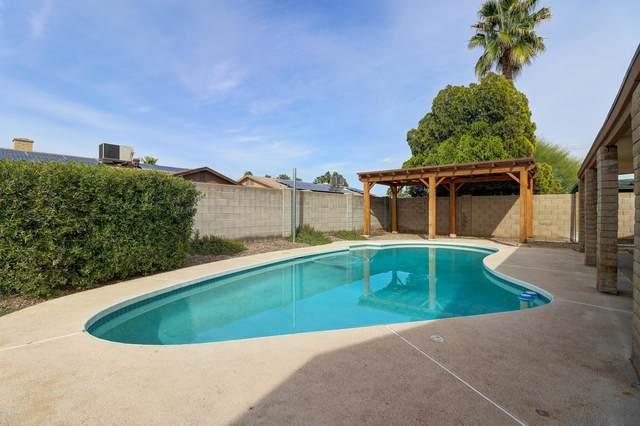 4008 W Altadena Avenue, Phoenix, AZ 85029 (MLS #6054505) :: REMAX Professionals