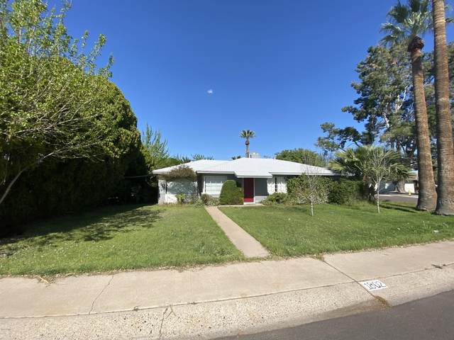 1802 W Rovey Avenue, Phoenix, AZ 85015 (MLS #6054563) :: Dave Fernandez Team | HomeSmart