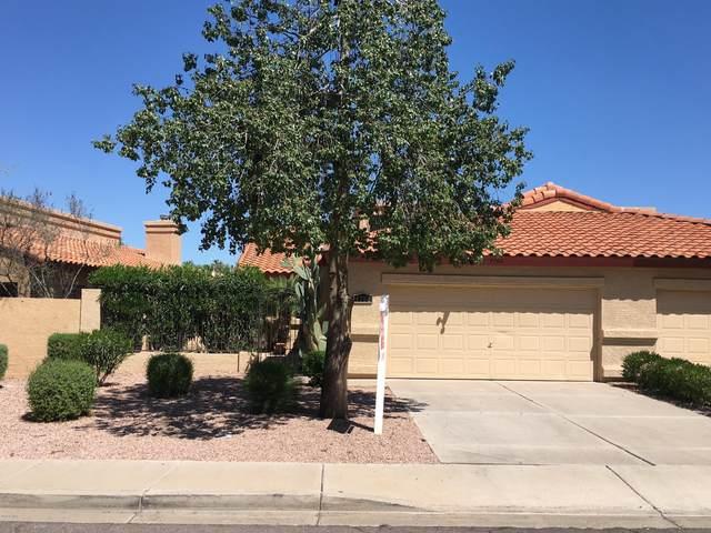 4760 W Joshua Boulevard, Chandler, AZ 85226 (MLS #6054613) :: The Kenny Klaus Team