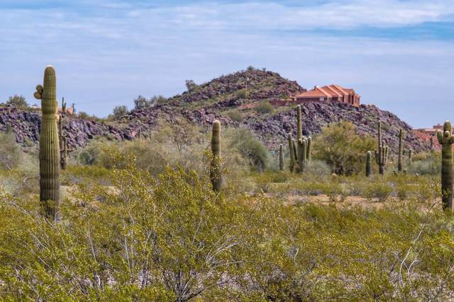0 W Dale Avenue, Surprise, AZ 85387 (MLS #6054633) :: The Bill and Cindy Flowers Team