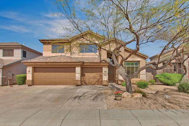 6410 E Carolina Drive, Scottsdale, AZ 85254 (MLS #6054655) :: The Laughton Team