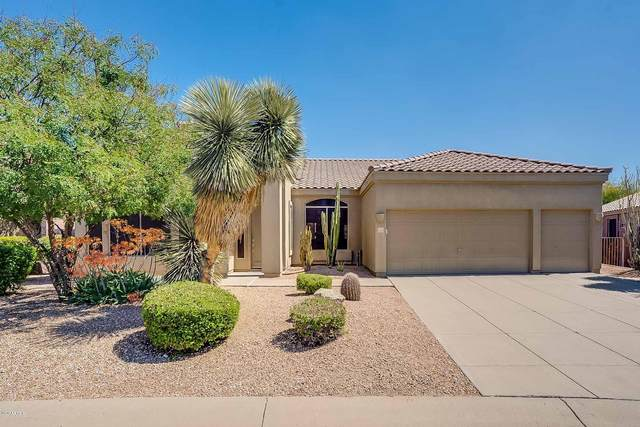3123 N Sawyer Circle, Mesa, AZ 85207 (MLS #6054711) :: The Kenny Klaus Team