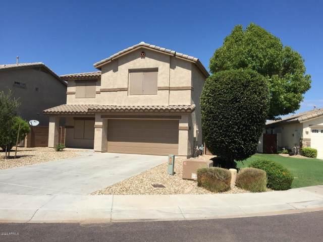 13112 W Fairmont Avenue, Litchfield Park, AZ 85340 (MLS #6054772) :: The Laughton Team