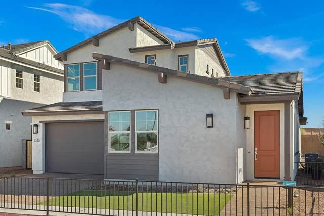 1025 S Hudson Drive, Chandler, AZ 85225 (MLS #6054792) :: The W Group
