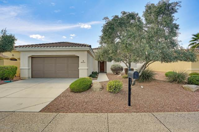 23018 N Giovota Drive, Sun City West, AZ 85375 (MLS #6054799) :: Long Realty West Valley