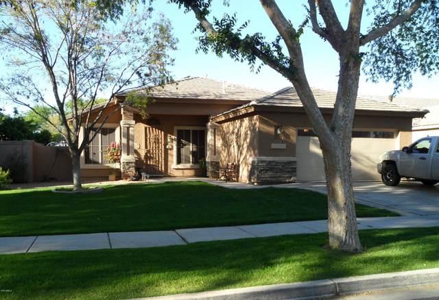 3450 E Cullumber Court, Gilbert, AZ 85234 (MLS #6054895) :: Revelation Real Estate