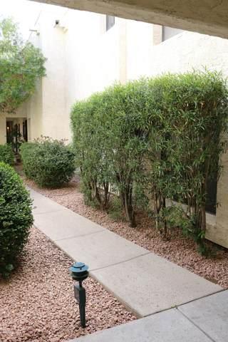 3119 W Cochise Drive #130, Phoenix, AZ 85051 (MLS #6054916) :: Brett Tanner Home Selling Team