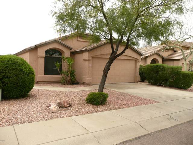 4827 E Melinda Lane, Phoenix, AZ 85054 (MLS #6054934) :: Conway Real Estate