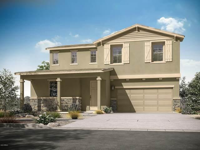8519 E Organza Avenue, Mesa, AZ 85212 (MLS #6054968) :: Conway Real Estate