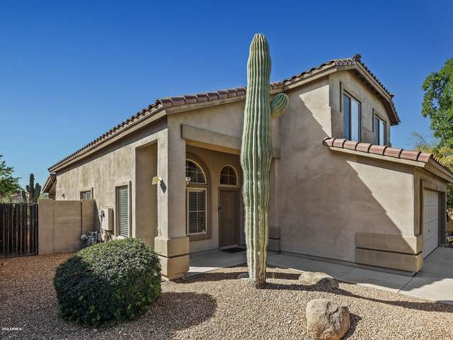 10465 E Texas Sage Lane, Scottsdale, AZ 85255 (MLS #6054980) :: Brett Tanner Home Selling Team