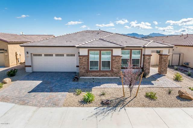 16651 S 180TH Drive, Goodyear, AZ 85338 (MLS #6055060) :: Nate Martinez Team