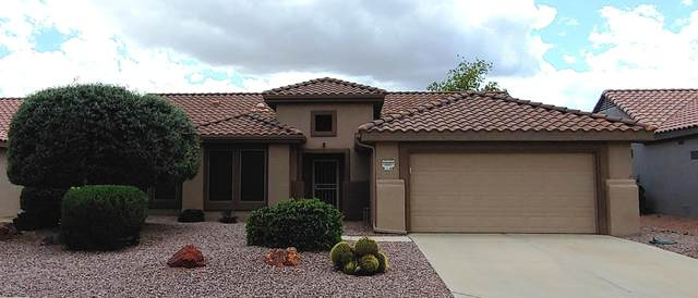 16007 W La Paloma Drive, Surprise, AZ 85374 (MLS #6055106) :: Nate Martinez Team